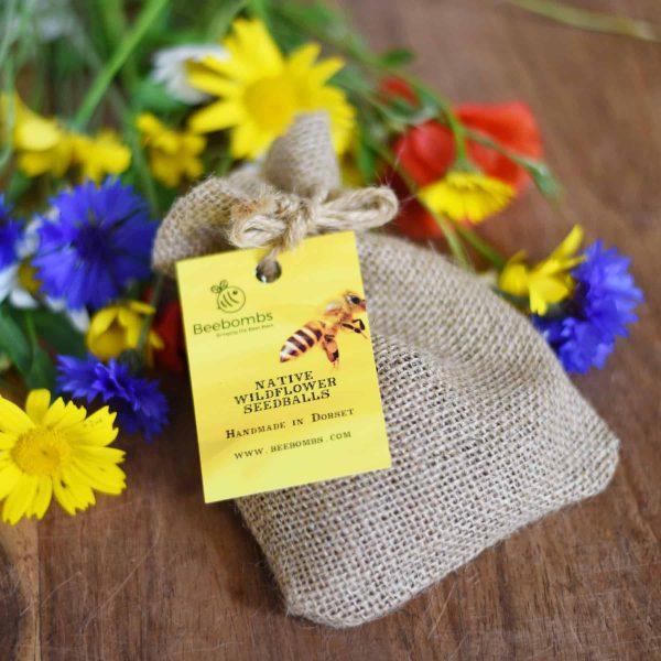 Beebombs wildflower seedballs