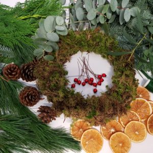 moss ring-cinnamon-orange slices-berries-eucalyptus-making kit